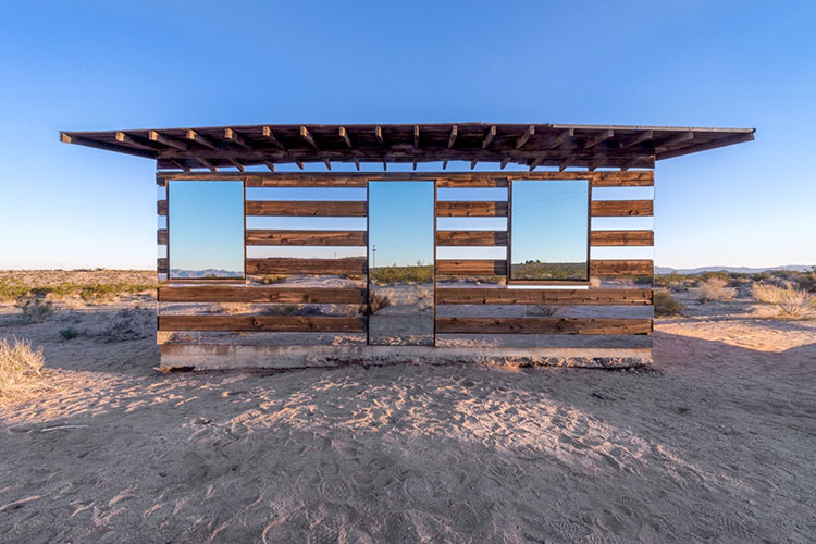 Lucid Stead by Phillip K Smith III 3